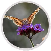 American Painted Lady Butterfly Round Beach Towel