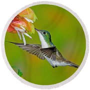 Andean Emerald Hummingbird Round Beach Towel