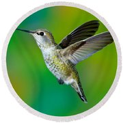 Annas Hummingbird Round Beach Towel