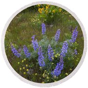 Arrowleaf Balsamroot And Lupine Round Beach Towel
