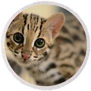 Asian Leopard Cub Round Beach Towel
