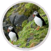 Atlantic Puffin, Fratercula Arctica Round Beach Towel