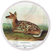 Audubon Deer Round Beach Towel