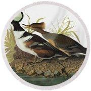 Audubon Merganser Round Beach Towel