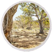 Australian Outback Oasis Round Beach Towel
