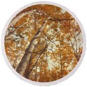 Autumn Aspens Round Beach Towel by Priska Wettstein
