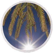 Autumn Coniferous Round Beach Towel