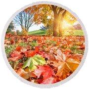 Autumn Fall Landscape In Park Round Beach Towel