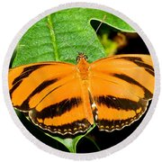 Banded Orange Butterfly Round Beach Towel