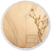 Beautiful Dried Vintage Flowers Round Beach Towel