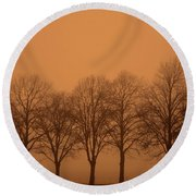 Beautiful Trees In The Fall Round Beach Towel