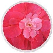 Begonia Named Nonstop Pink Round Beach Towel
