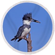 Belted Kingfisher With Fish Round Beach Towel
