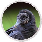Black Vulture Portrait Round Beach Towel