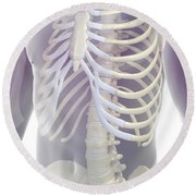 Bones Of The Torso Round Beach Towel