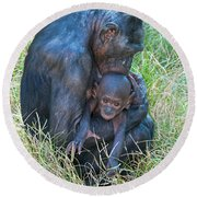 Bonobo Mother And Baby Round Beach Towel
