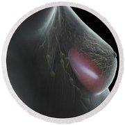 Breast Implant Round Beach Towel