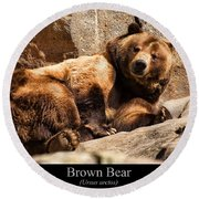 Brown Bear Round Beach Towel by Chris Flees