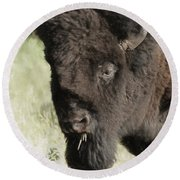Buffalo Painterly Round Beach Towel