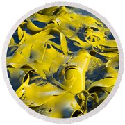 Bull Kelp Blades On Surface Background Texture Round Beach Towel