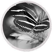 Butterfly In Motion Round Beach Towel