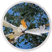 Cacatoes A Huppe Orange Cacatua Round Beach Towel
