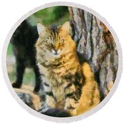 Cats In Hydra Island Round Beach Towel