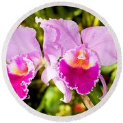 Cattleya Orchid Round Beach Towel
