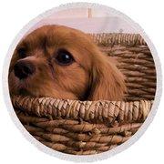 Cavalier King Charles Spaniel Puppy In Basket Round Beach Towel