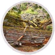 Cheakamus Rainforest Debris Round Beach Towel