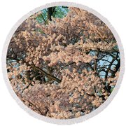 Cherry Blossoms In Pink And Brown Round Beach Towel
