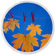 Close-up Of Fall Colored Maple Leaves Round Beach Towel