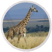 Common Giraffe Round Beach Towel