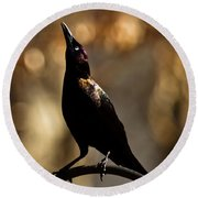 Common Grackle Round Beach Towel
