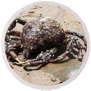 Crab Beach Round Beach Towel
