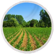 Cultivated Land Round Beach Towel by Carlos Caetano