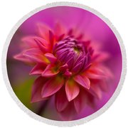 Dahlia Burst Round Beach Towel