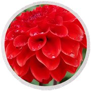 Dahlia Named Ali Oop Round Beach Towel
