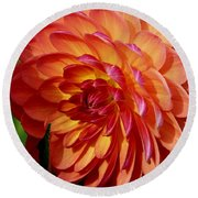 Dahlia Profile Round Beach Towel
