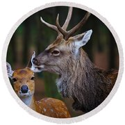 Deer Love Round Beach Towel