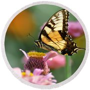 Delicate Wings Round Beach Towel by Bill Cannon