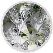 Dianthus Superbus - White Round Beach Towel