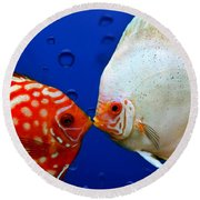 Discus Fish Round Beach Towel