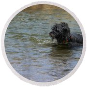 Dog Ball Water Round Beach Towel