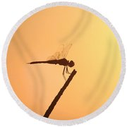 Dragonfly Silhouette  Round Beach Towel