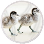 Ducklings Round Beach Towel