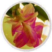 Easter Cactus Round Beach Towel