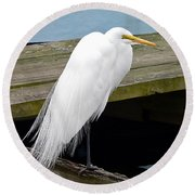 Elegant Egret Round Beach Towel