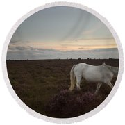 Evening In New Forest Round Beach Towel