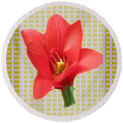 Exotic Red Tulip In Bold And Two Border Patterns Tiny Sparkle Parallal Horizontal Strips Summer Flow Round Beach Towel